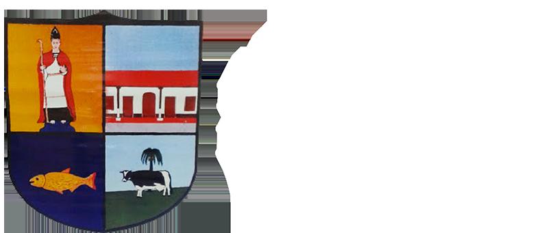 Municipalidad de Paso de Patria